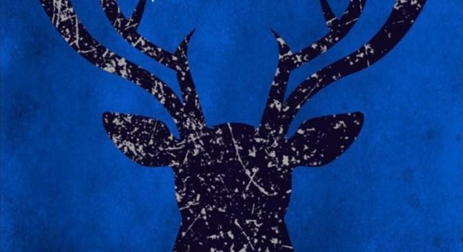 Tenebre e Ossa: copertina del libro